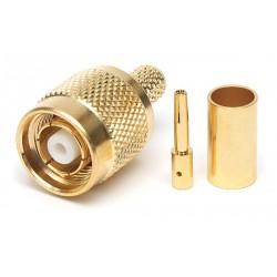 PLUG RPTNC gold